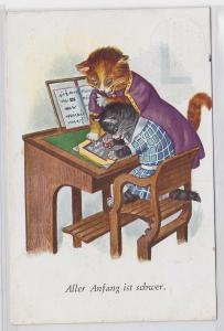 77607 Humor Ak Katzenschule