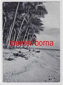 67888 Ak Palmenstrand von Samoa ehemalige Deutsche Kolonie