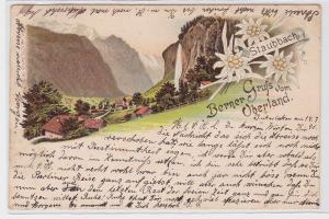 90293 AK Gruß vom Berner Oberland - Staubbach, Blick ins Tal 1896