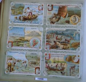 Liebigbilder Serie 544, Schätze des Meeres, komplett 1902 (L114168)