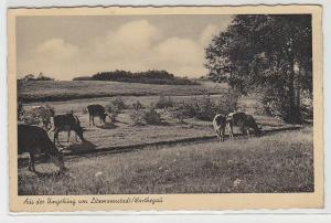 68040 Ak Aus der Umgebung von Litzmannstadt Warthegau 1944