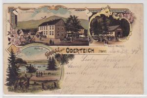 24377 Lithografie AK Gruss vom Oderteich (Harz) - Sonnenberg & Restaurant 1897