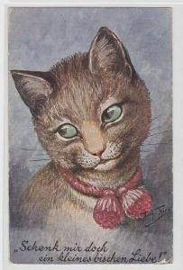 06424 Arthur Thiele Künstler Ak Katze
