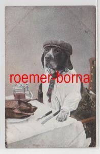 81825 Humor Ak Hund im Hemd mit Hut ist am Tisch 1974