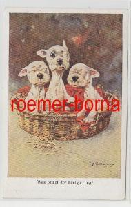 81331 Humor Ak Bulldogge Welpen