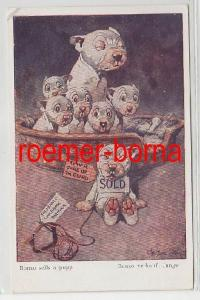 80990 Humor Ak Bulldogge