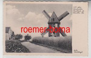 77566 Ak 200jähr. Windmühle Haselbach üb. Schmölln Thüringen um 1930