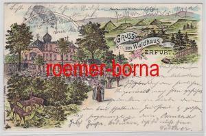81305 Ak Lithographie Gruß vom Waldhaus Erfurt 1904