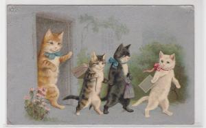 82636 Ak 4 Katzen gehen zur Schule um 1910