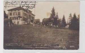 89654 Ak Katzenstrick bei Einsiedeln Gasthaus zur Froh.Aussicht 1922