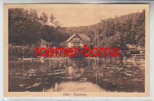 82307 Ak Danzig Oliva Freudental 1925