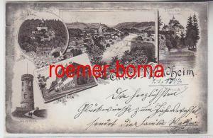 74559 Ak Lithografie Gruss aus Waldheim Strafanstalt + Schloss Kriebstein 1897