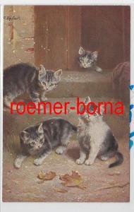 84607 Künstler Ak C. Reichert: Katzen im Herbst auf Treppenstufen um 1910