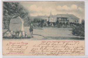 91988 Ak Gruß aus Dolzig Dłużek Geburtsstätte ihrer Majestät der Kaiserin 1899
