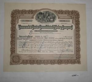 181982 Aktie à 1 Dollar Tamarack & Custer Consolidated Mining 24.2.1916 (127967)