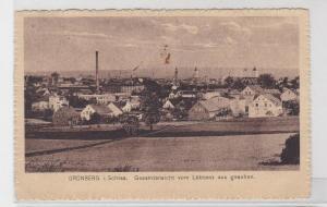 94485 AK Grünberg in Schlesien - Gesamtansicht von Löbtenz aus gesehen 1919