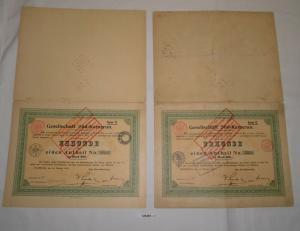 2x 300 Mark Anteil Gesellschaft Süd-Kamerun Hamburg 18. Februar 1910 (128459)