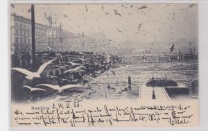 91935 Ak Hamburg Möwen auf der Alster 1905