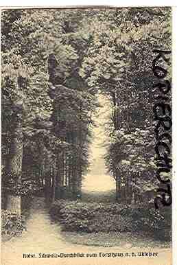 Alte Ansichtskarte/AK/Postkarte: Holst. Schweiz - Durchblick vom Forsthaus n. d. Ukleisee