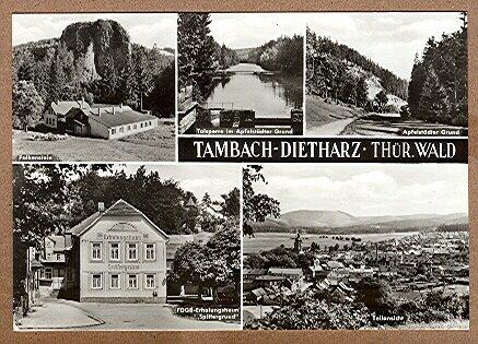 Alte Ansichtskarte/AK/Postkarte: Tambach-Dietharz / Thür. Wald (Multibild-Karte)