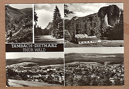 Alte Ansichtskarte/AK/Postkarte: Tambach-Dietharz / Thür. Wald (Fünfbild-Karte)