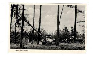 AK WK2 Panzer im Wald 2 Weltkrieg