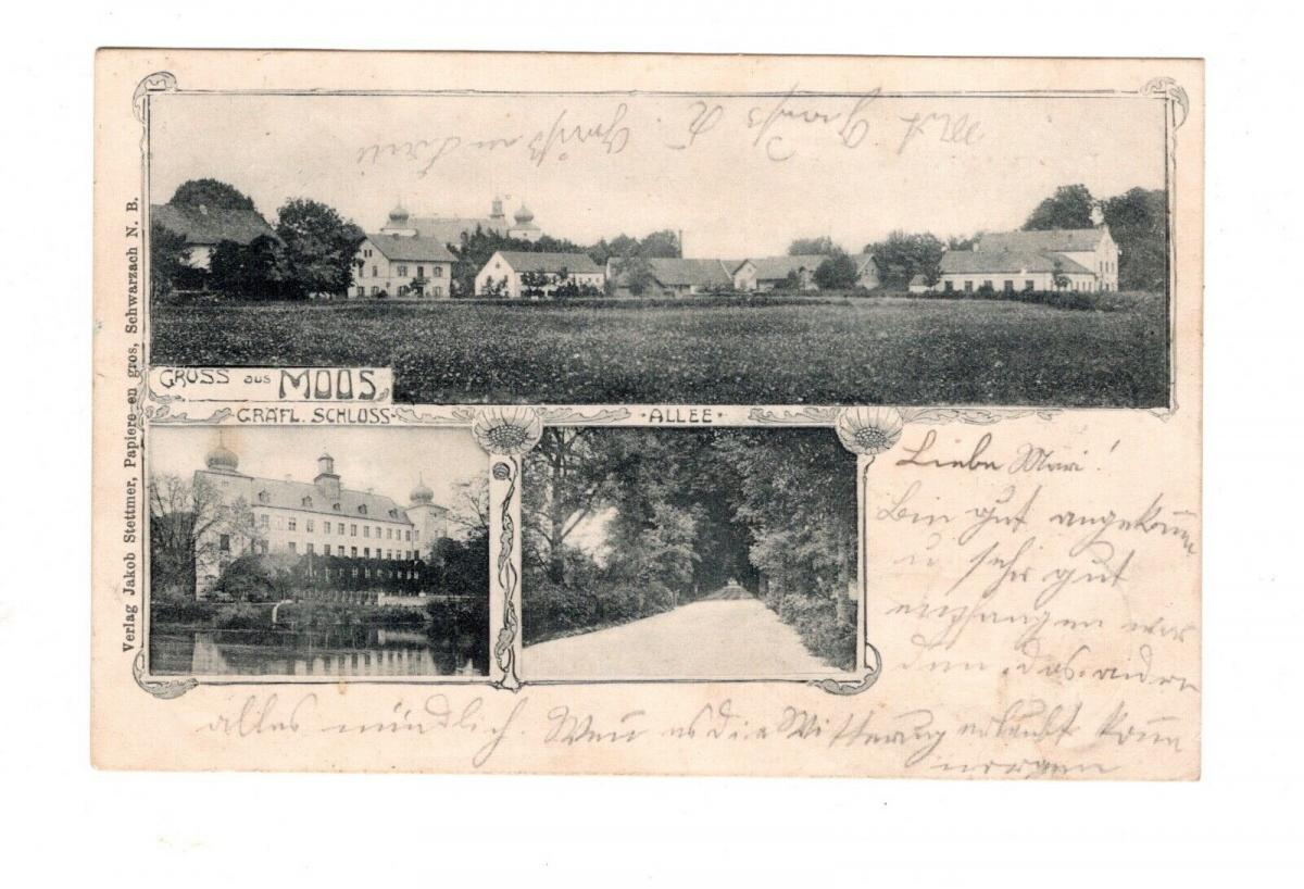 AK Niederbayern Moos Kreis Deggendorf Gräfliches Schloss 1900 0