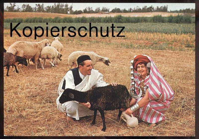 ÄLTERE POSTKARTE LIBYA VEDUTA CAMPESTRE RURAL VIEW VUE CHAMPETRE TRACHT traditional costume folklorique libye sheep cpa