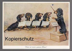 ÄLTERE POSTKARTE DEIN IST MEIN GANZES HERZ Konzert concert Dirigent Dackel teckel basset dachshund AK Ansichtskarte cpa
