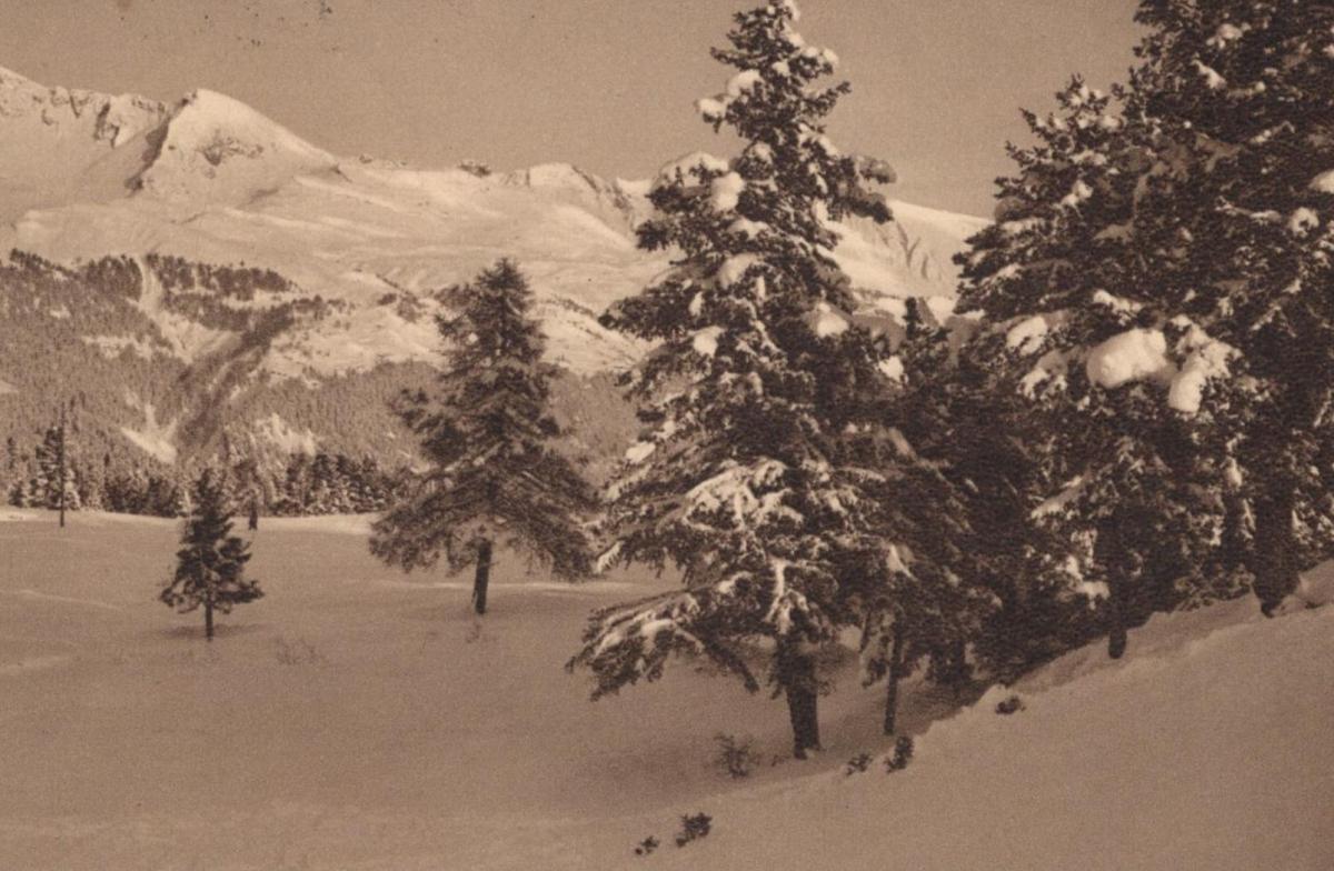 alte postkarte fr hliche weihnachten alpen wintermotiv. Black Bedroom Furniture Sets. Home Design Ideas