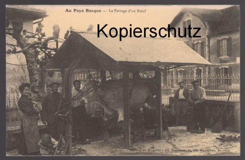 ÄLTERE REPRO POSTKARTE AU PAYS BASQUE LE FERRAGE D'UN BOEUF Fleischer Metzger cpa postcard Ansichtskarte AK
