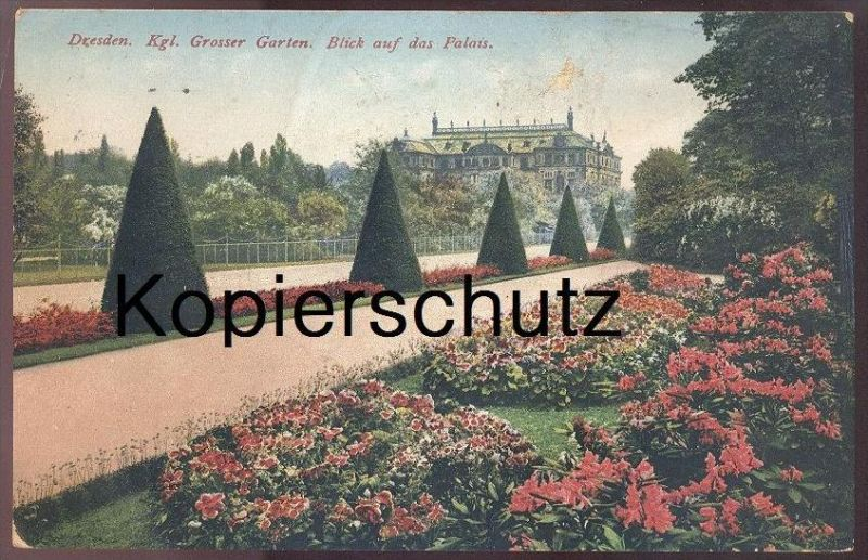 ALTE POSTKARTE DRESDEN KGL. GROSSER GARTEN BLICK AUF DAS PALAIS Blumen flowers Rhododendron cpa postcard Ansichtskarte