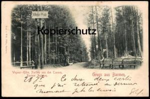 ALTE POSTKARTE GRUSS AUS BARMEN WEGNER-HÖHE 1900 PARTHIE AUS DEN TANNEN BARMER ANLAGEN WUPPERTAL cpa postcard AK