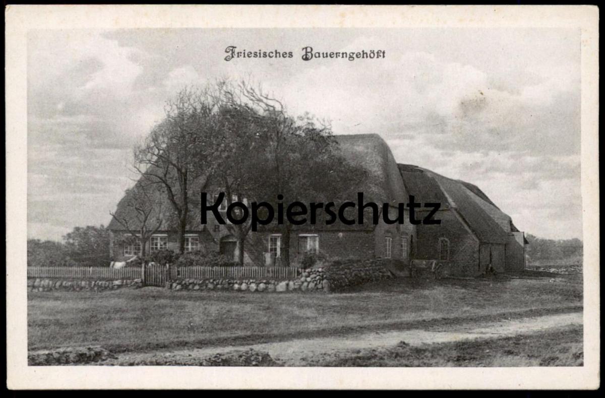 ALTE POSTKARTE FRIESISCHES BAUERNGEHÖFT BAUERNHAUS Haus traditional house farm Bauernhof ferme postcard AK Ansichtskarte