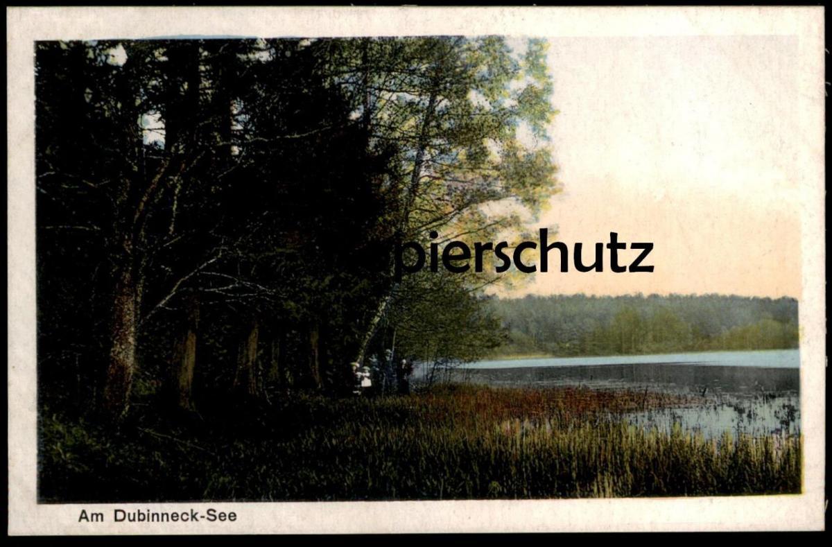 ALTE POSTKARTE AM DUBINNECK-SEE BEI ORLOW LÖTZEN OSTPREUSSEN Orlowen Loetzen Gizycko Orlowo cpa Ansichtskarte postcard