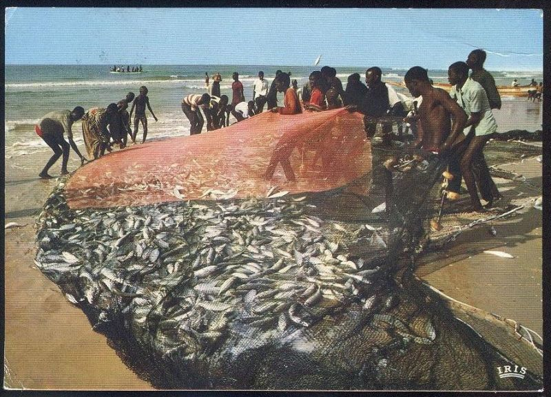 POSTKARTE SCÈNE DE PECHE Afrique en couleurs Africa in colour Fischfang Fischer pecheur fishing scene fisher Afrika cpa