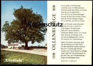 POSTKARTE KRÜSELINDE ALTENBERGE LINDE BAUM TREE ARBRE Tilleul Lime Linden Plattdeutsch Dialekt dialect dialecte postcard