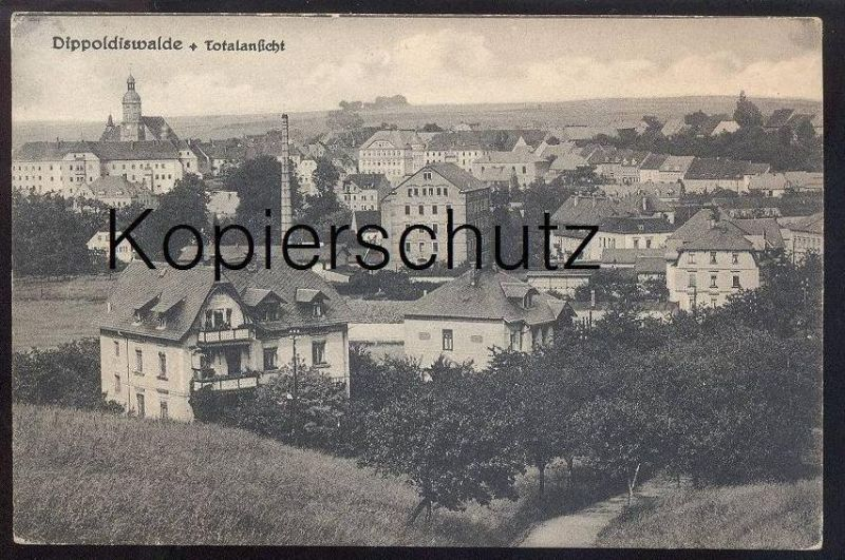 ALTE POSTKARTE DIPPOLDISWALDE TOTALANSICHT Ansichtskarte AK postcard cpa
