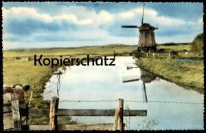 ÄLTERE POSTKARTE BERGEN DAMLANDERMOLEN Holland Nederland Windmühle Mühle Mill Moulin Windmill Molen Kuh cow vache cpa AK