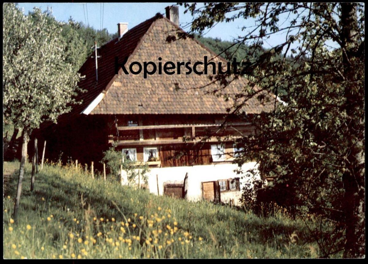 POSTKARTE BAUERNHOF BAUERNHAUS Schwarzwald ? cpa postcard AK Ansichtskarte