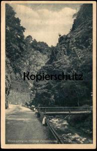 ALTE POSTKARTE HIRSCHSPRUNG IM HÖLLENTAL bei Hinterzarten Schwarzwald Hirsch deer cerf black forest postcard AK cpa