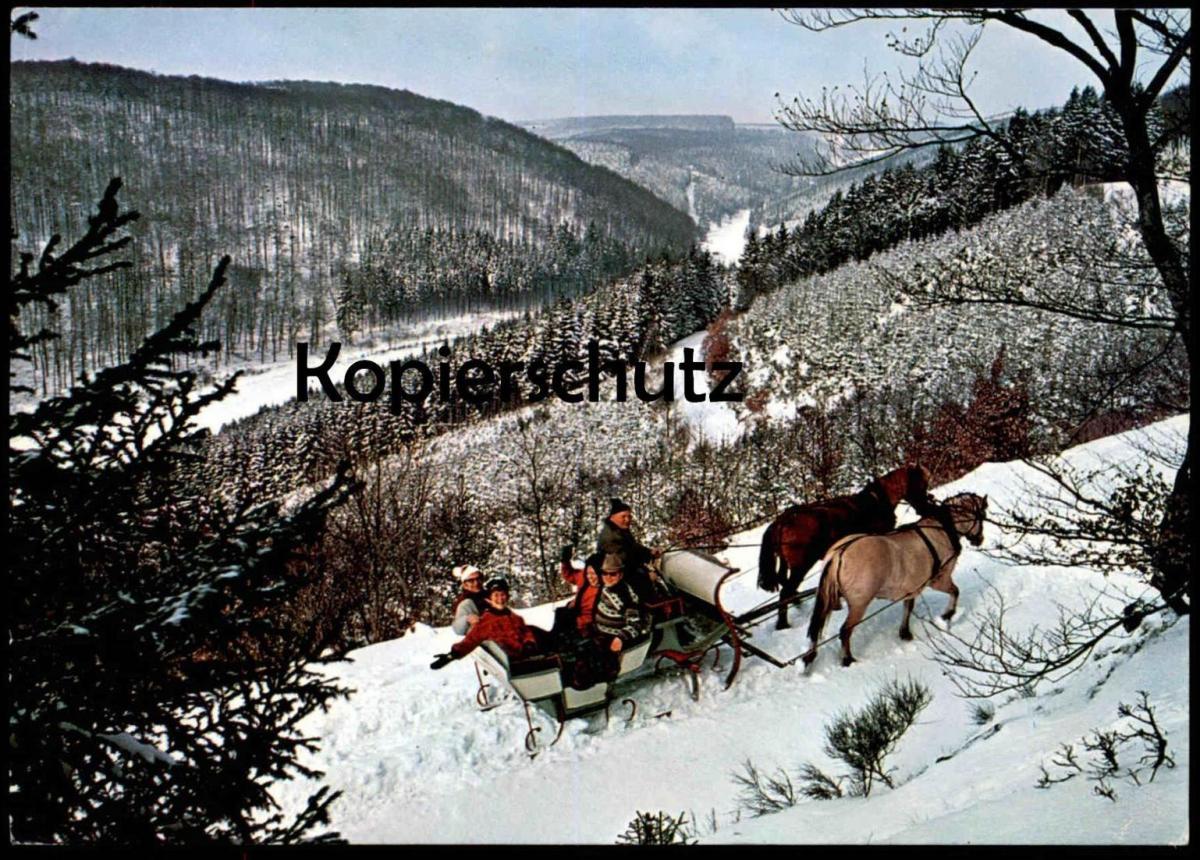 ÄLTERE POSTKARTE SCHLITTENFAHRT IM SAUERLAND LUGE SLEDGE SLEIGH Schnee Neige Snow Horse Pferd Cheval Stempel Winterberg