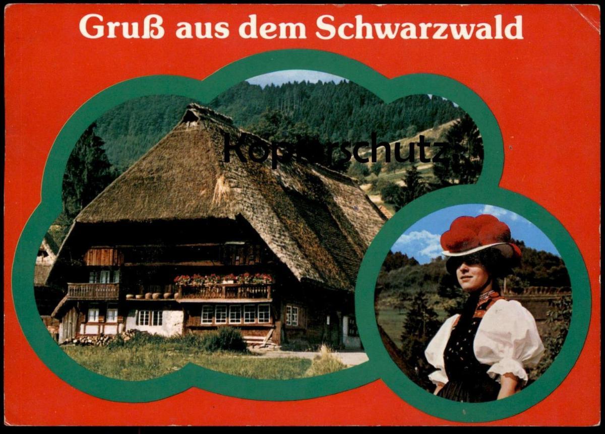 POSTKARTE GRUSS AUS DEM SCHWARZWALD Black Forest Bauernhaus Tracht Traditional Costume Folklorique Biene Bee Abeille cpa