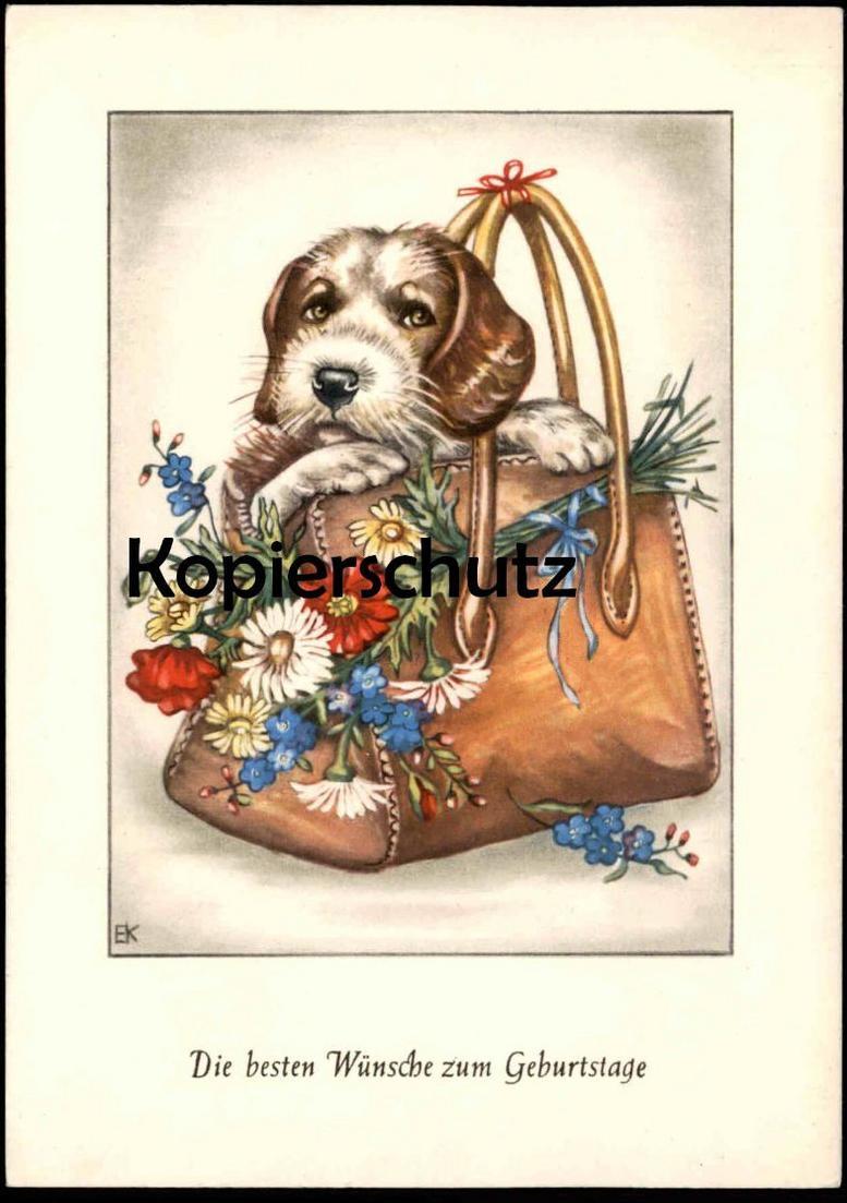 Altere Postkarte Die Besten Wunsche Zum Geburtstag Mit Hund Dog Cane