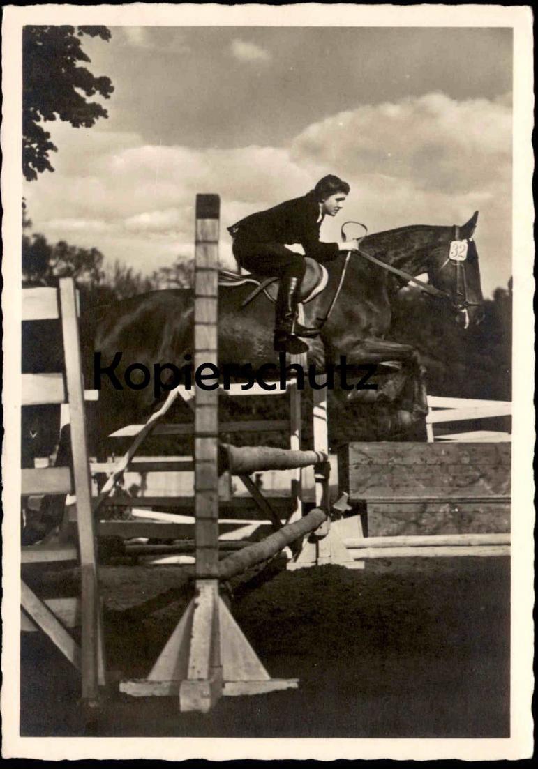 ÄLTERE POSTKARTE Pferd Reitsport Show jumping Sport hippique Equitation horse cheval cpa AK Ansichtskarte postcard