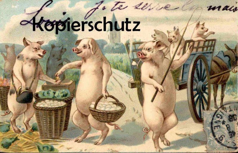 ALTE POSTKARTE VERMENSCHLICHTE SCHWEINE HUMANISED PIGS COCHON HUMANISE Markt marché market postcard Ansichtskarte AK
