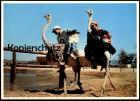 ÄLTERE POSTKARTE STRAUSSENRENNEN OSTRICH RACING OUDTSHOORN CAPE Kaap Volstruis-resies autruche Vogel Strauss postcard