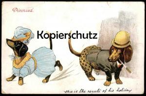 ALTE POSTKARTE DACKEL VERMENSCHLICHT DIVORCED 1907 Scheidung divorce geschieden teckel basset dachshund Humor humour dog