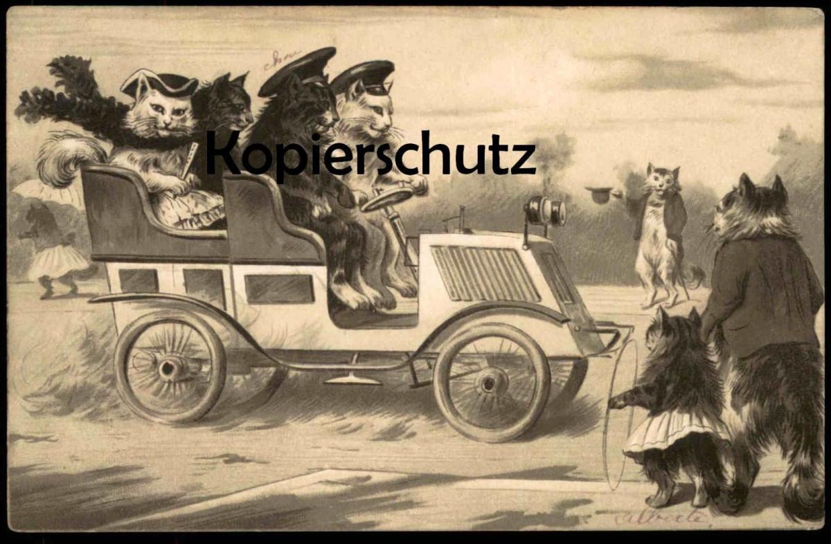 ALTE POSTKARTE KATZEN FAHREN AUTOMOBIL 1914 HUMANIZED CATS Katze cat chat chats car voiture Auto Ansichtskarte postcard