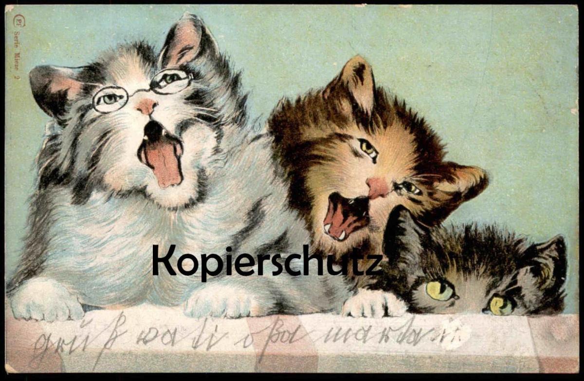 ALTE POSTKARTE VERMENSCHLICHTE KATZEN BRILLE TRAGEND Mieze glasses lunettes Katze Cat Chat Cats Chats cpa vermenschlicht